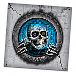Powell-Peralta Pool Light Ripper Banner