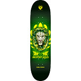 Powell Peralta Pro Salman Agah Lion Flight® Skateboard Deck - Shape 242 - 8 x 31.45