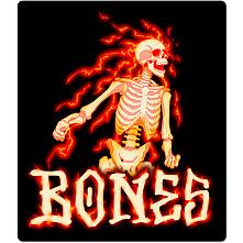 BONES WHEELS Blazer Sticker 20pk