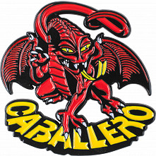 Powell Peralta Cab Dragon Lapel Pin