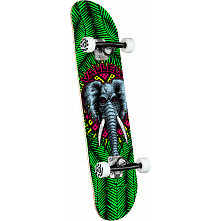 Powell Peralta Vallely Elephant One Off Green Birch Complete Skateboard - 8 x 31.45