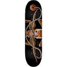 Powell Peralta BISS Marion Moth Skateboard Deck - Shape 243 - 8.25 x 31.95