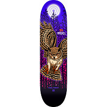 Powell Peralta Pro Ben Hatchell Owl Skateboard Deck - Shape 248 - 8.25 x 31.95