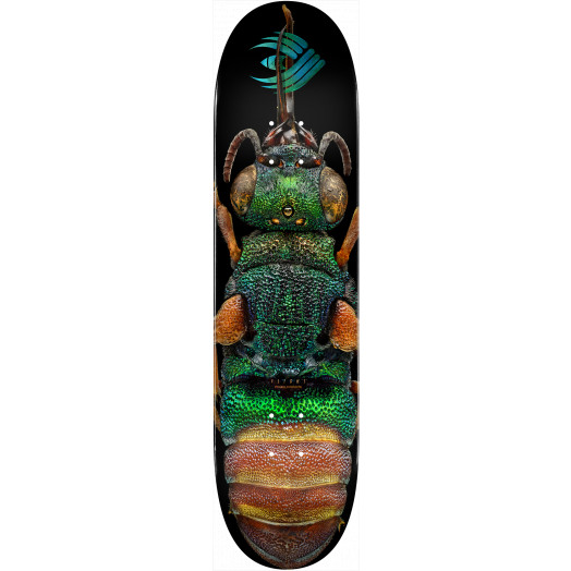 Powell Peralta Flight® Skateboard Deck BISS Ruby Tailed Wasp - Shape 244 - 8.5 x 32.08