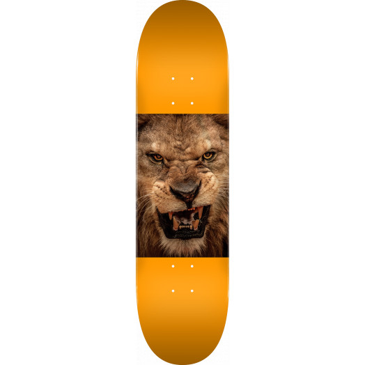 "MINI LOGO CHEVRON ANIMAL ""14"" SKATEBOARD DECK 243 LION - 8.25 x 31.95"
